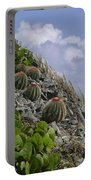 Turks Cap Cactus Portable Battery Charger