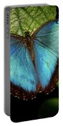 Turquoise Beauty Portable Battery Charger