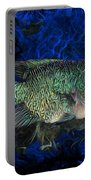 Turquoise Texas Cichlid  Portable Battery Charger