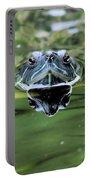 Turtle Head Portable Battery Charger