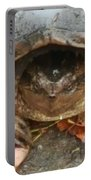 Turtle In Repose  Portable Battery Charger