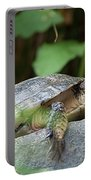Turtle Rock Portable Battery Charger