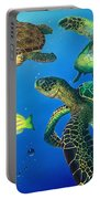 Turtle Towne Portable Battery Charger