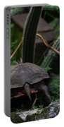 Turtles Butt Portable Battery Charger