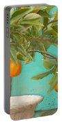 Tuscan Orange Topiary - Damask Pattern 3 Portable Battery Charger