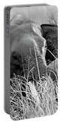 Tusker In The Grass Portable Battery Charger
