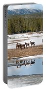 Twice The Elk Portable Battery Charger