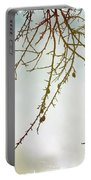 Twigs And Winter Sky Two Portable Battery Charger