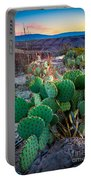 Twilight Prickly Pear Portable Battery Charger