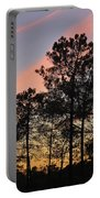 Twilight Tree Silhouettes Portable Battery Charger