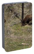 Twin Grizzlies-signed-#3299 Portable Battery Charger