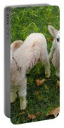 Twins - Spring Lambs Portable Battery Charger