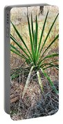 Twisted Yucca Portable Battery Charger