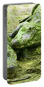 Two Alligators Portable Battery Charger
