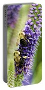 Salvia With Bees Portable Battery Charger