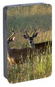 Two Black-tailed Deer In Meadow Grass Portable Battery Charger