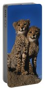 Two Cheetah Cubs Portable Battery Charger