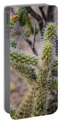 Two Cholla Friends Portable Battery Charger