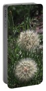Two Dandelions, Portable Battery Charger