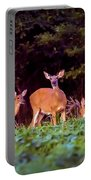Two Doe And One Buck Portable Battery Charger