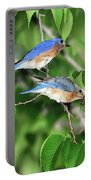 Two Eastern Bluebirds Portable Battery Charger