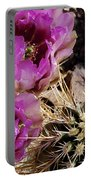 Two Fucshia Blossoms  Portable Battery Charger