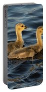 Two Goslings Portable Battery Charger