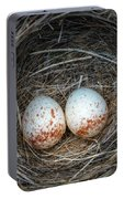 Two Junco Eggs In The Nest Portable Battery Charger