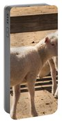 Two Little Lambs. Portable Battery Charger