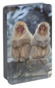 Two Monkeys Portable Battery Charger