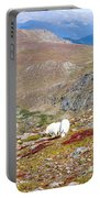Two Mountain Goats On Mount Bierstadt In The Arapahoe National Fores Portable Battery Charger