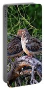 Two Mourning Doves H14 Portable Battery Charger