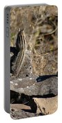 Two Munks On The Rocks Portable Battery Charger