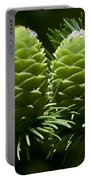 Two Pinecones Portable Battery Charger