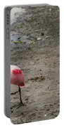 Two Roseate Spoonbills 2 Portable Battery Charger