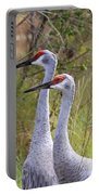 Two Sandhills In Green Portable Battery Charger