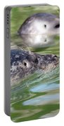 Two Seal Swimming Nature Scene Portable Battery Charger