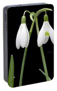 Two Snow Drops Portable Battery Charger