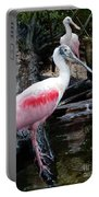 Two Spoonbills Portable Battery Charger