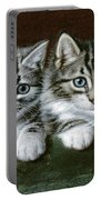 Two Tabby Kittens  Portable Battery Charger