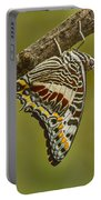 Two Tailed Pasha Butterfly Portable Battery Charger