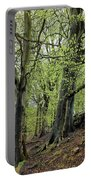 Two Trees In Springtime Portable Battery Charger