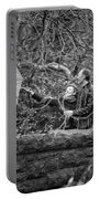 Ula And Wojtek Engagement 16 Portable Battery Charger