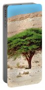 Umbrella Thorn Acacia, Negev Israel Portable Battery Charger