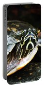 Underwater Turtle Portable Battery Charger