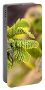 Unfolding Fern Leaf Portable Battery Charger