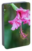Unfolding Of A Hibiscus Portable Battery Charger