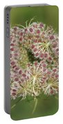Unfurling Nature Macro Square Portable Battery Charger