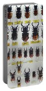 Unusual Pattern Made Out Of Many Stag Beetles Of Different Sizes Portable Battery Charger
