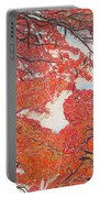 Up Close Flamboyant Portable Battery Charger